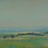 Yellow Field Romney Marsh.jpg