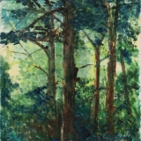 study for isabella - woodland sunlight.jpg